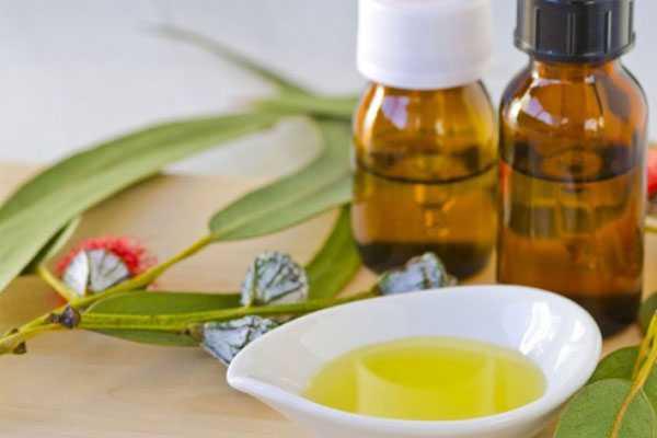 Эфирное масло эвкалипта